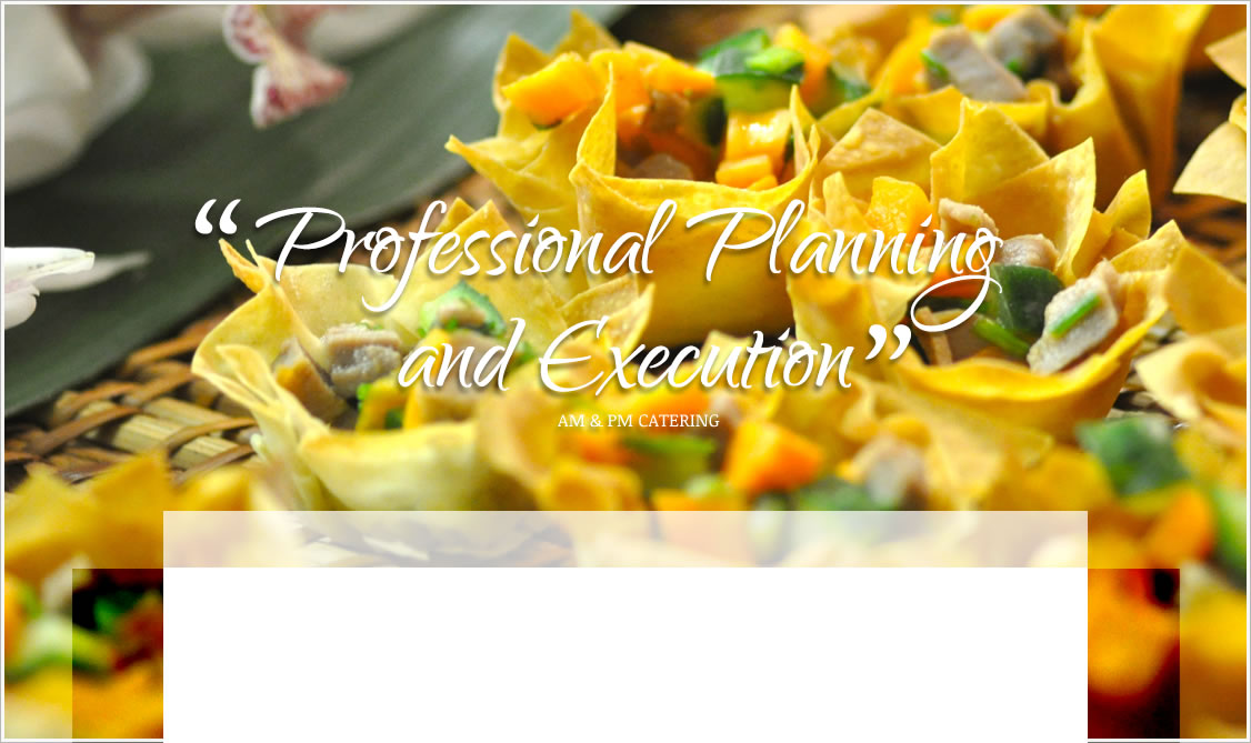 Professional Planning and Execution